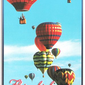 4X6 Postcard – Flying High Over…South Carolina – Pack of 50
