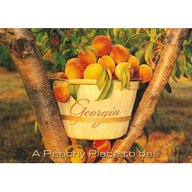 4X6 Postcard Georgia Peach Basket – Pack of 50 Postcards